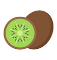 kiwi flat icon fruit and diet graphics vector image