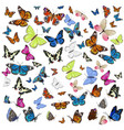 a collection different butterflies flying and vector image vector image