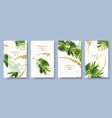 banners set of alocasia tropic leaf vector image vector image
