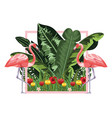 exotic and tropical bird frame vector image vector image