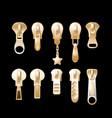 golden pulls metal clothing garment components vector image vector image