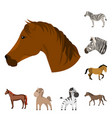 isolated object of trot and running symbol vector image