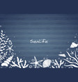 sealife and bubble on blue wood background border