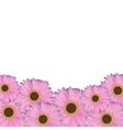 Gerbera Flower Natural Background vector image