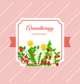 medical aromatherapy herbs label design vector image vector image