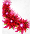 Red flowers background vector image vector image