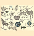 set hand drawn elements in vintage style vector image vector image