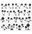 set of solar palm beach vector image