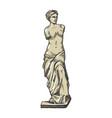 aphrodite ancient statue engraving vector image