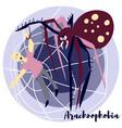 arachnohobia vector image