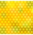 Color Blur Backgrounds 02 vector image