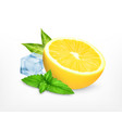 fresh lemon with leaves of mint vector image