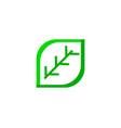 green eco leaf logo icon design template vector image vector image
