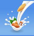 milk splash with almond realistic vector image vector image