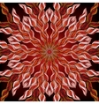 Ornamental mandala background with many details vector image vector image