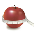 red apple measured the meter vector image vector image