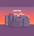 city downtown at sunset vector image