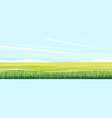 green wheat field landscape background vector image