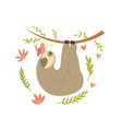 sloth hanging on tree adorable cartoon animal vector image vector image
