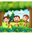 three monkeys dancing at the forest vector image