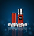 Cosmetics packaging Holiday Gift vector image