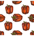 Hand drawn seamless of bell peppers vector image vector image