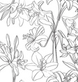 lilies pattern superposed vector image vector image