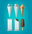 packing for ice cream vector image vector image