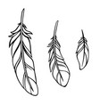 set three feathers made in a simple graphic vector image