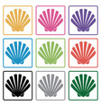 shell icons vector image