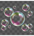 Transparent soap bubbles vector image vector image