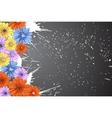 beautiful flowers vector image vector image