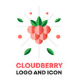 cloudberry icon logo berry vector image vector image