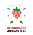cloudberry icon logo berry vector image