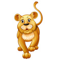 Cute lion cub with happy face vector image