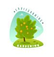 fruit tree emblem vector image