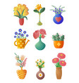 set of house plants and flowers in pots and vases vector image vector image