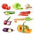 Vegetables Decorative Icons Collection vector image vector image