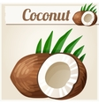 Coconut Detailed Icon vector image vector image