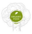 label broccoli fresh natural eco food hand drawn vector image