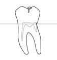 molar human tooth continuous line graphic vector image vector image