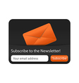Newsletter Form with Orange Envelope vector image vector image