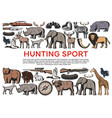 animals and birds weapons for hunting sport icons vector image