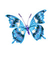 colorful abstract watercolor butterfly on a white vector image