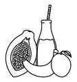 fresh papaya and mango juice fruits in botttle vector image