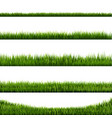 grass border big collection vector image vector image