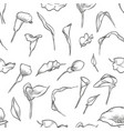 hand drawn callas seamless pattern vector image