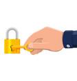 metal padlock with key pad lock with keyring vector image