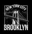 nyc brooklyn vector image