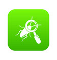 search insect icon green vector image vector image